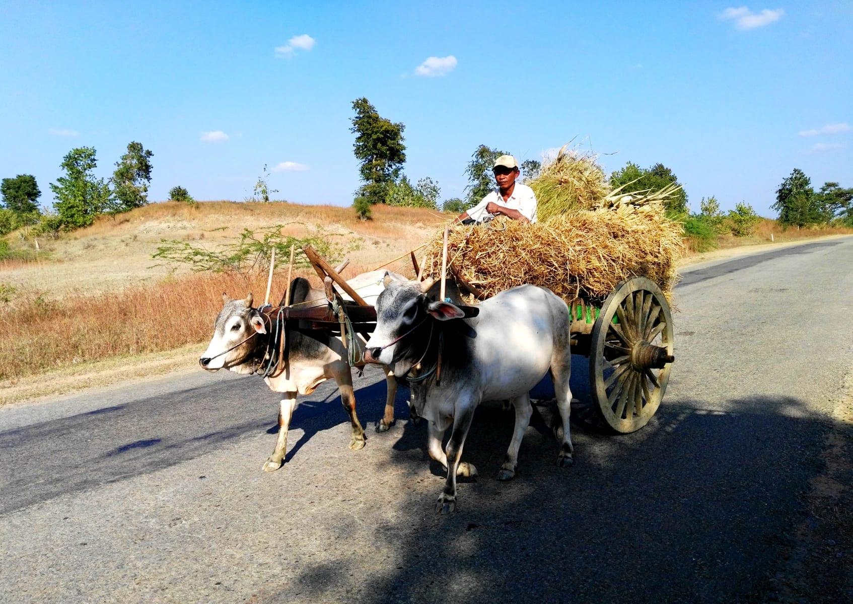 Tradiční a nelehký život v Myanmaru