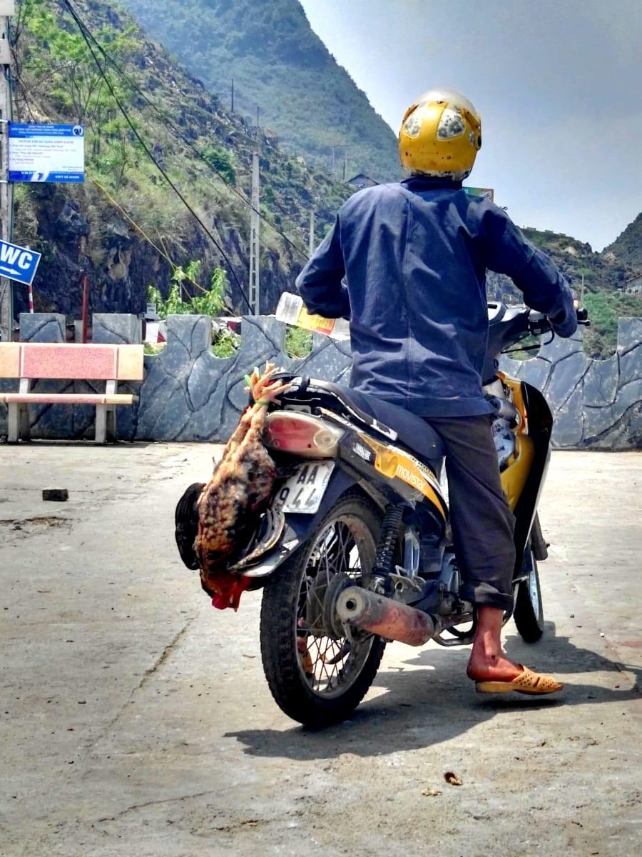 Ve Vietnamu se na motorkách převáží vše