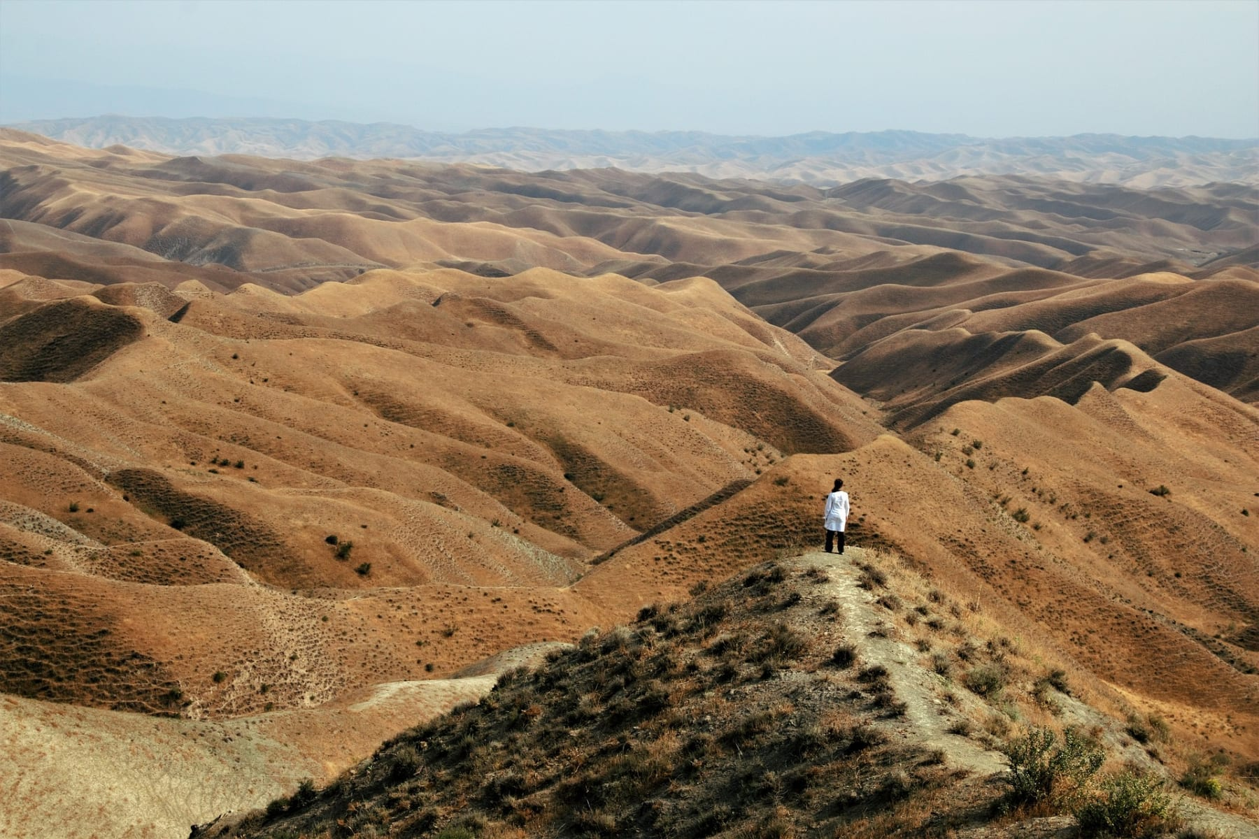 Krajina Íránu je hornatá a poměrně vyschlá