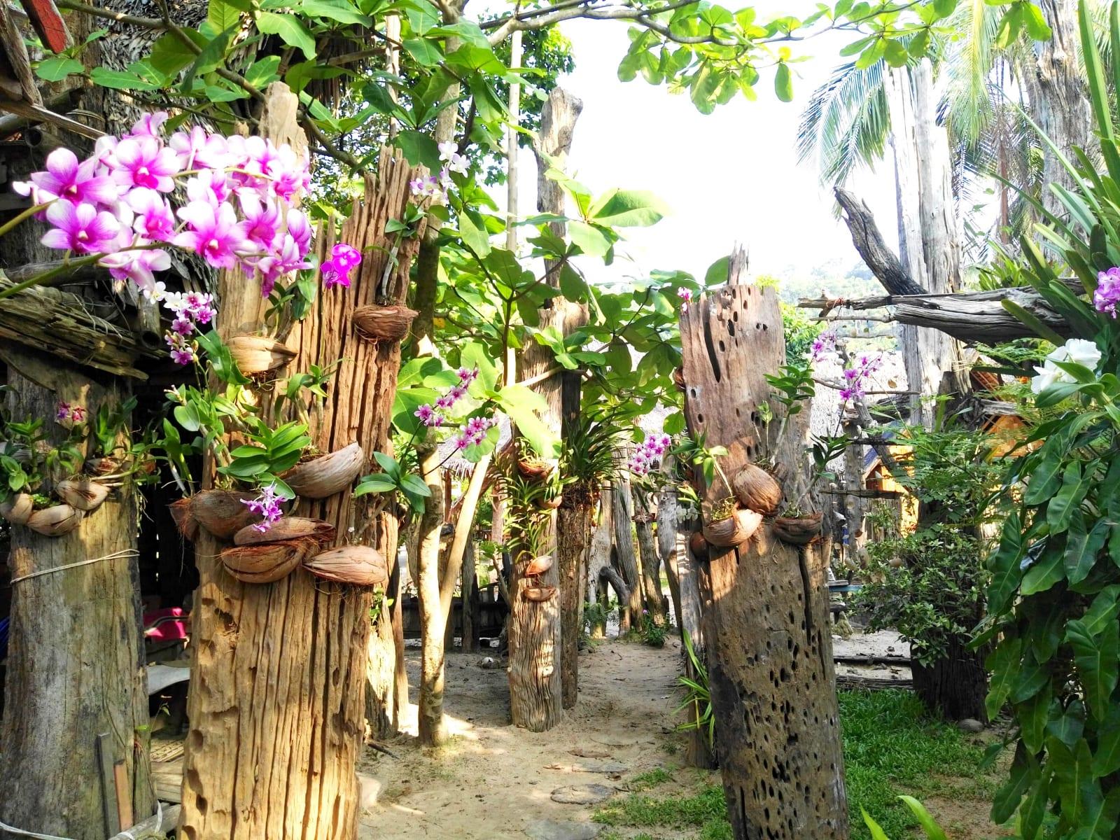 Hippy bar, Koh Phayam, Thajsko