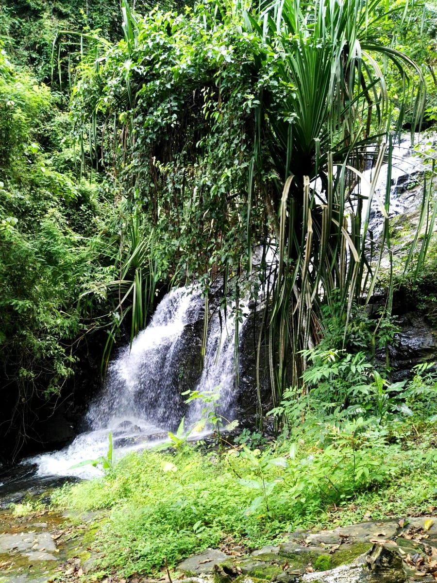 Durian waterfall