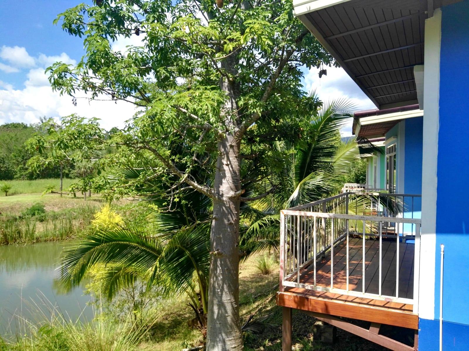 Komfortnější ubytování v bungalovech, The creek villa, Loei, Thajsko