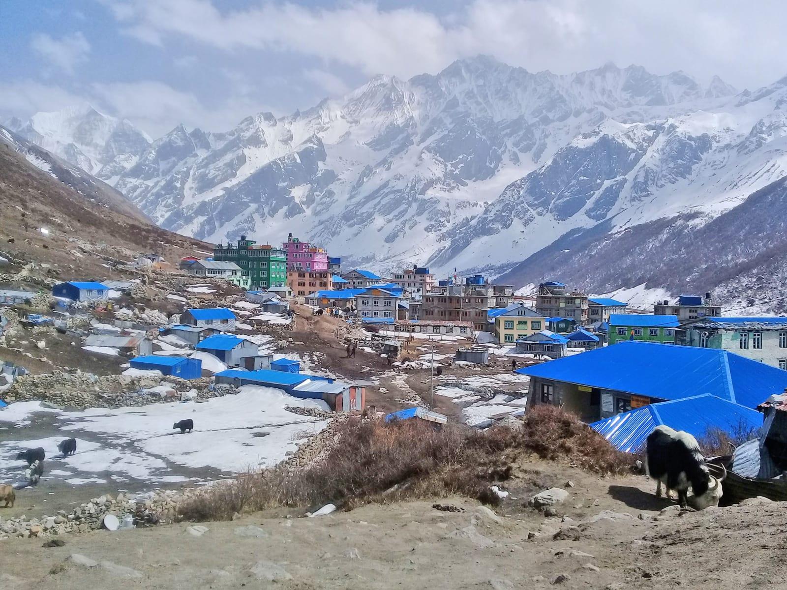 Městečko Kyanjin Gompa, Nepál