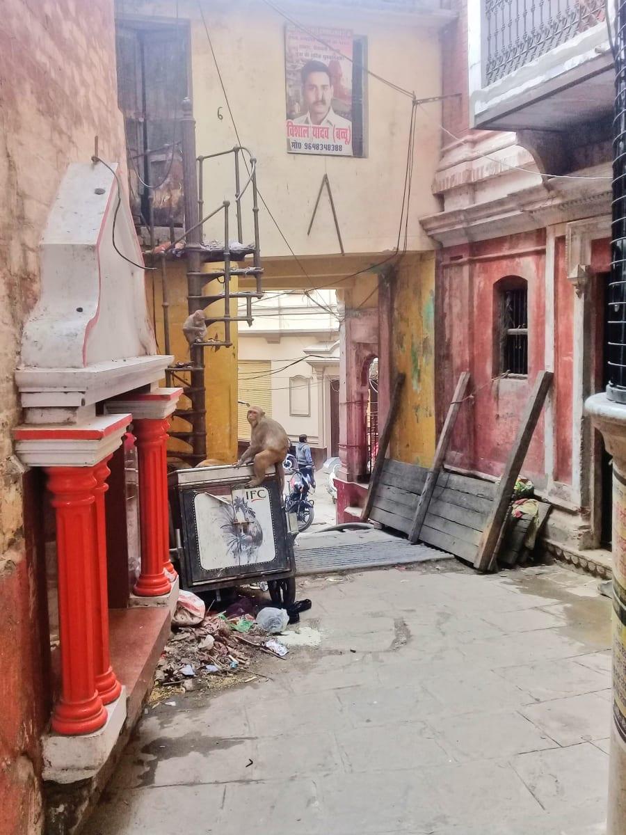 Snímek během procházky ulicemi Varanásí